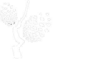 Jels Volsted